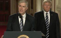 President Trump's Supreme Court Nominee Debated
